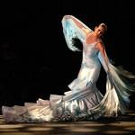 small-things-flamenco-dance-show.jpg